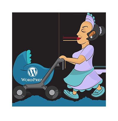 WP Web Nanny